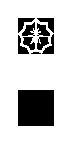 Diseño de logotipo para empresa Sol Fumigaciones