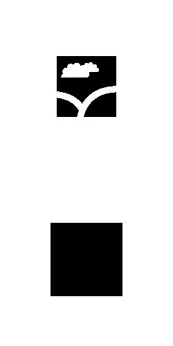 Diseño de logotipo para empresa Skythemes